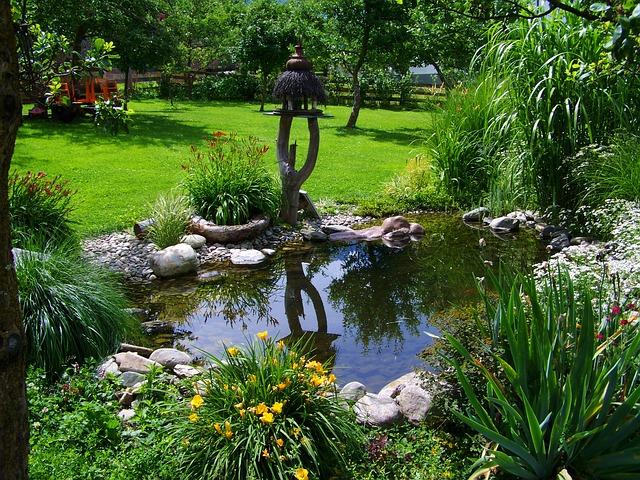 Zbavte vaše jazierko vláknitej riasy